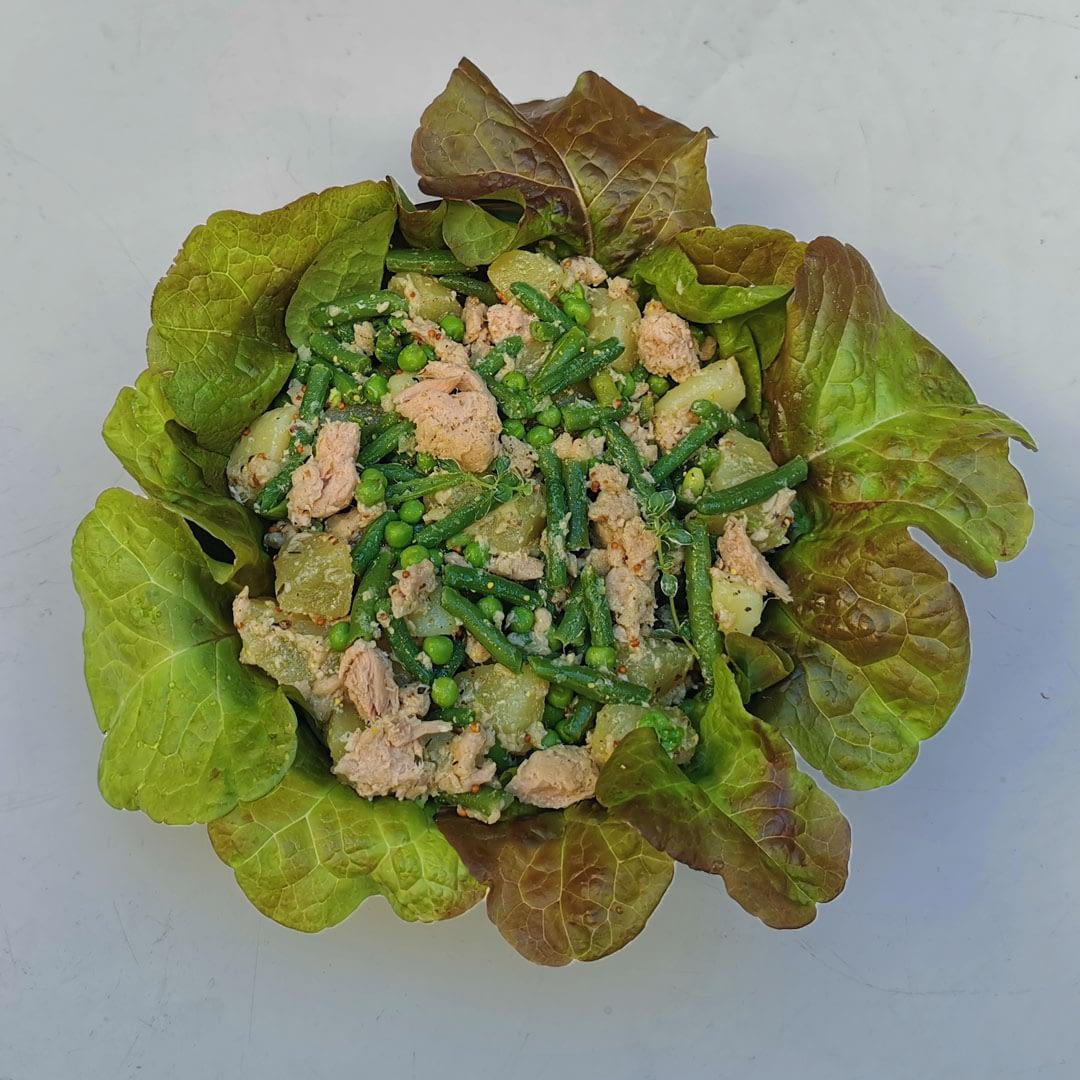 Salade de thon & légumes marinés